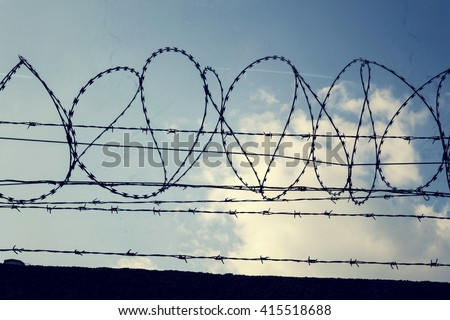 Filtered Vintage Picture Barbed Wire Fence Stock Photo (Royalty Free ...