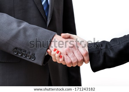 Finalisation of a business project just finished, handshake