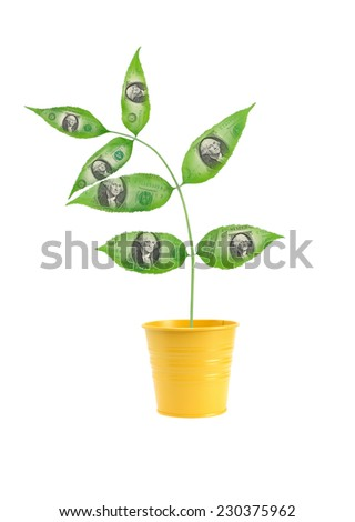 Financial concept. Tree with one dollar leaves in yellow flowerpot