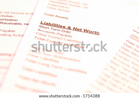 "Financial documents with focus on words ""Liabilities & Net Worth"". Very easy to shift colours. - stock photo"