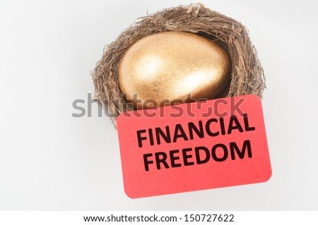 Financial freedom concept with golden egg in the bird nest - stock photo