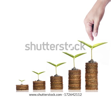 Financial growth concept,Golden coins and seed over white background - stock photo