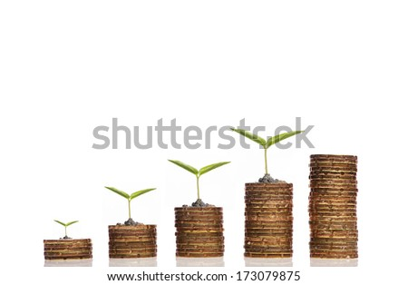 Financial Growth concept, Stack golden coin over white background