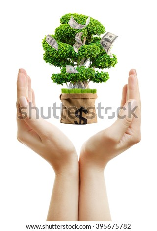 Financial success concept. Money tree growing on human hand isolated on white - stock photo