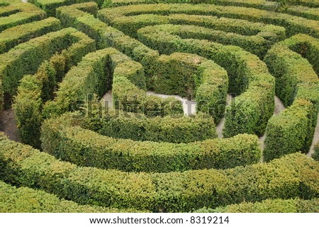 Find the way out from the labyrinth - stock photo
