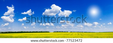 Fine panorama of rapeseed field and cloudscape. - stock photo