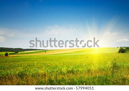 Fine summer landscape. - stock photo
