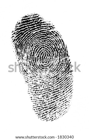 Finger print on white background, good detail - stock photo