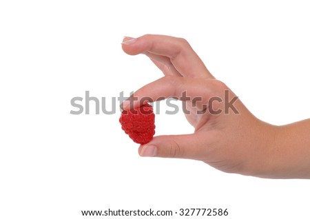 fingertips holding red raspberry isolated white background,