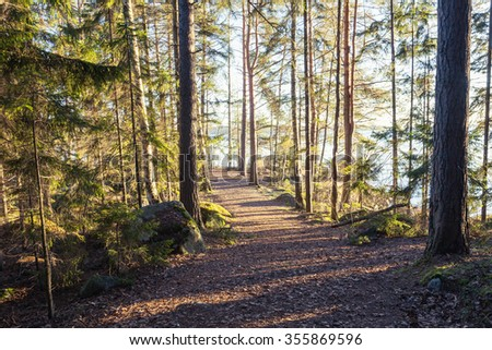 Finish forest and lake at Christmas day - stock photo