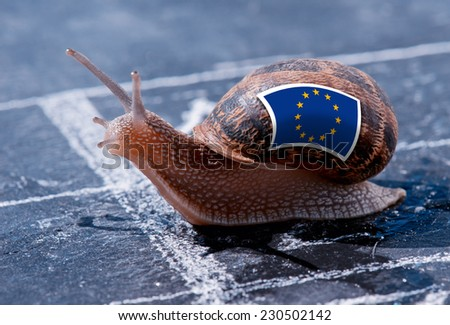 finish line winning of a snail with the colors of Europe flag - stock photo