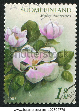 FINLAND - CIRCA 2005: stamp printed by Finland, shows Apple Blossom, circa 2005
