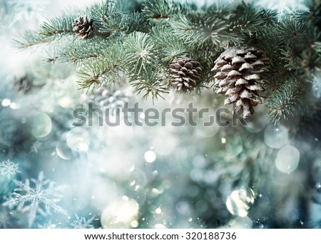 Fir Branch With Pine Cone And Snow Flakes - Christmas Holidays Background  - stock photo