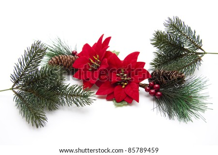 Fir branches and Christmas star
