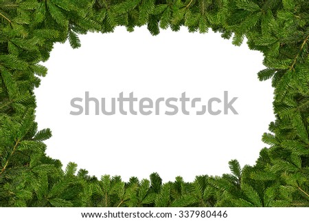 fir branches frame on white background - stock photo