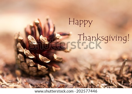 Fir Cone Closeup as Autumn Background with the Words Happy Thanksiving - stock photo