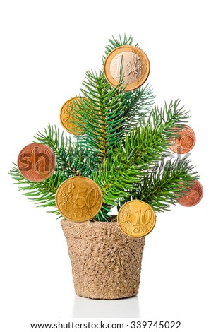 Fir tree with Euro coins on white background - stock photo