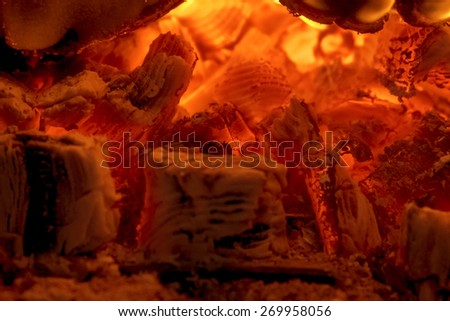 Fire and coals - stock photo