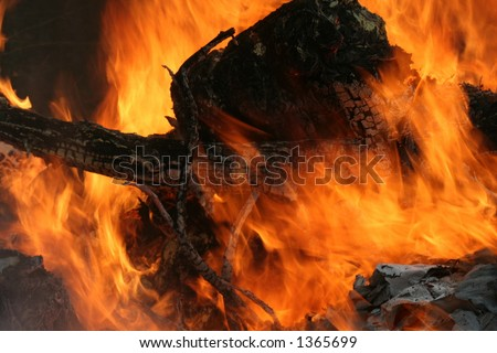 fire and flames - stock photo