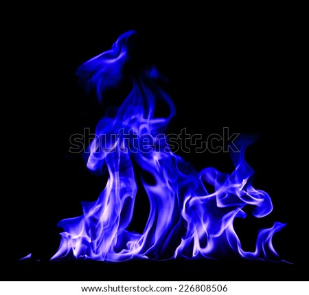 Fire and flames blue on a black background