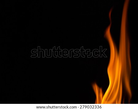 fire burning in black background - stock photo