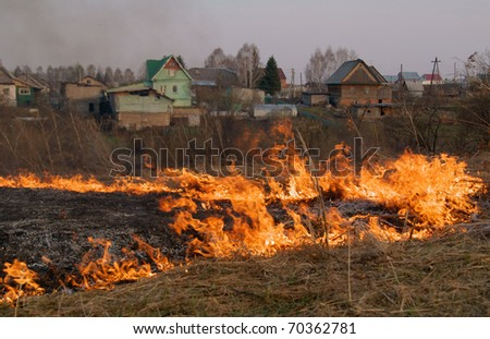 Fire - burning of a dry grass