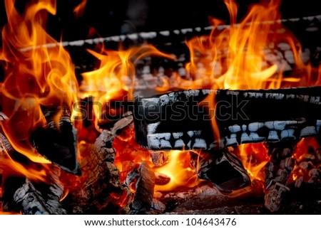 Fire Burning wood - stock photo