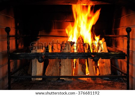 Fire burns in a fireplace - stock photo