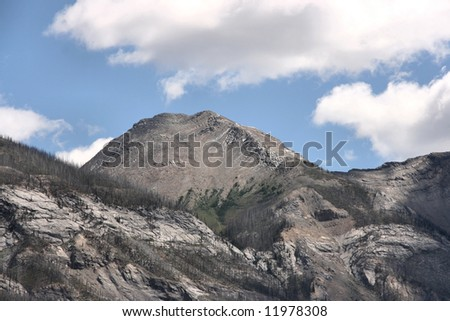 Fire damage clearings - burnt forest on mountain slopes in Kootenay National Park of Canada - stock photo