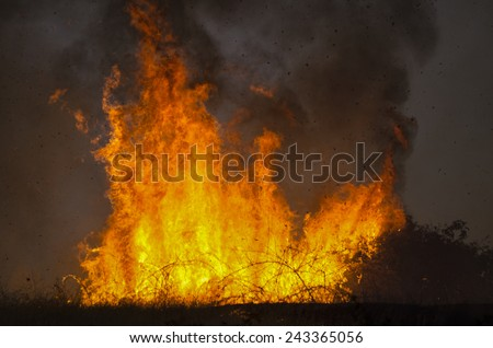 Fire fighters work  to suppress a natural cover brush and grass fire in southern Oregon - stock photo