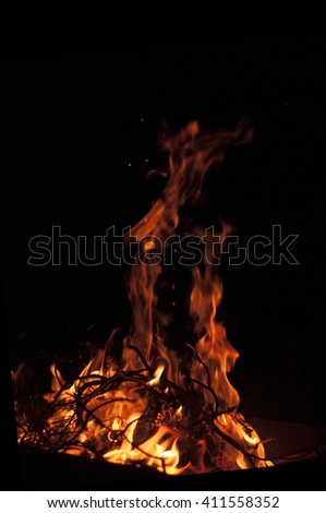 Fire flame on a black background. Texture of a flame - stock photo