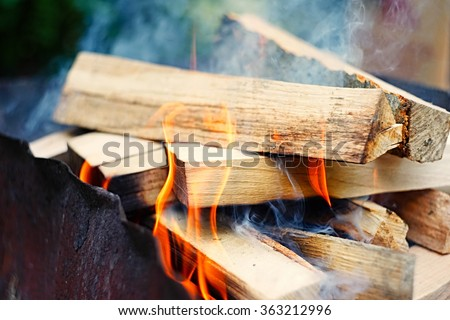 Fire, flames from wood ember for grill or bbq picnic, fume and firewood outdoor - stock photo