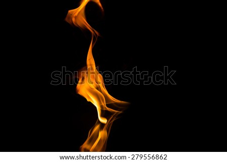 fire flames with reflection on black background - stock photo