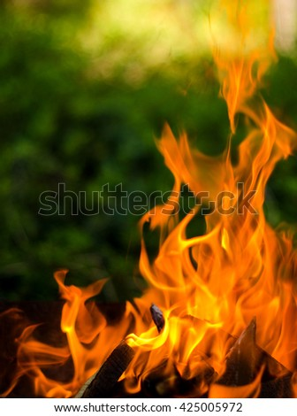 Fire from burning wood in the grill in the evening amidst the greenery of the garden - stock photo