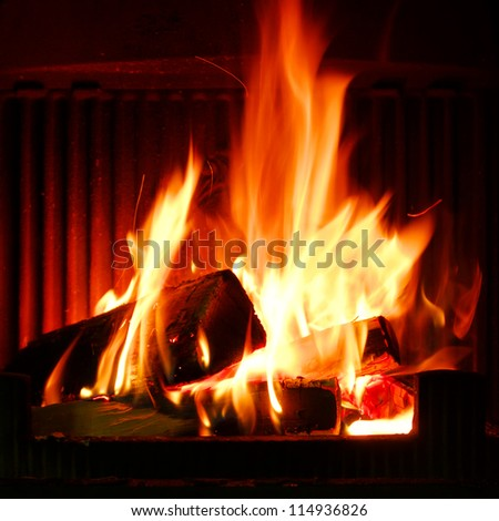 Fire in a fireplace. Fire flames on a black background - stock photo