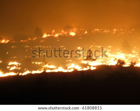 fire in the forest; the shooting of emergency - stock photo