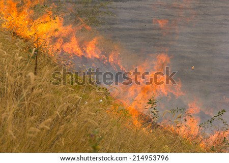Fire on the field threatens housing. - stock photo