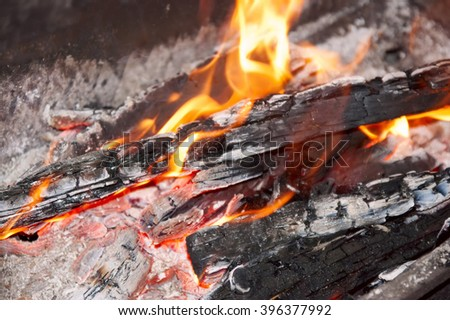 fire with burning firewood closeup
