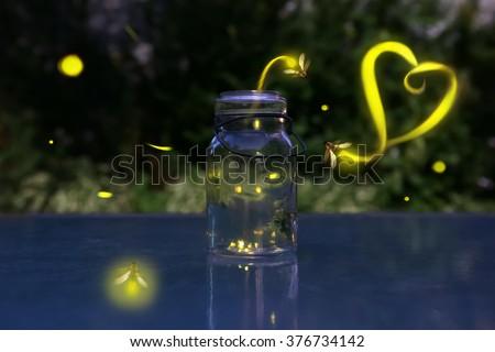 Fireflies in love.  - stock photo