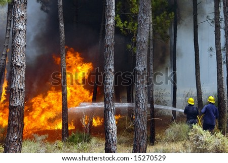 fireman working - stock photo