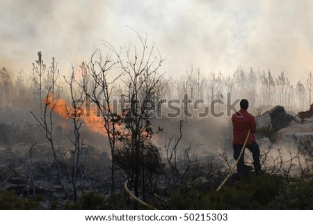 Firemen and forest - stock photo