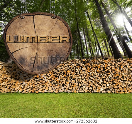Firewood in the Woods and Lumber Sign. Dry chopped firewood logs in a pile in a green forest and wooden sign, section of tree trunk with text lumber, hanging with metal chain. - stock photo