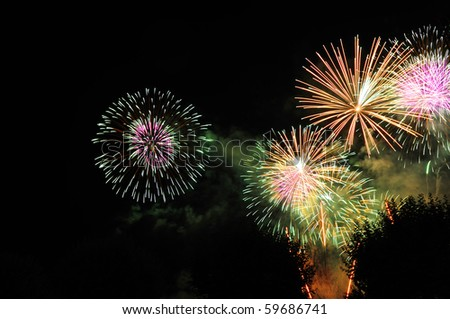 Firework bursts in the night sky, over trees (just visible). A faint hint of the horizon below. Space for text in the dark of the night sky. - stock photo