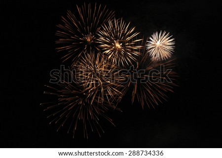 Firework in palm form - stock photo