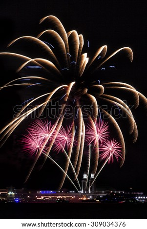 Fireworks exploding into the night sky - stock photo