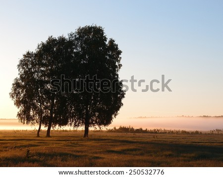 First ray of sunshinet, Omsk region, Russia - stock photo
