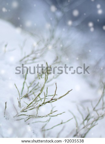 First snow impression, beautiful winter concept snowfall - stock photo