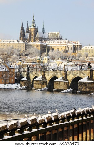 First Snow in Prague, gothic Castle with the Charles Bridge in the sunny Day
