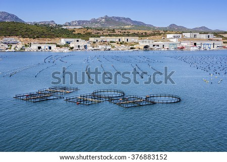 Fish and mussel farm in the the coast - stock photo