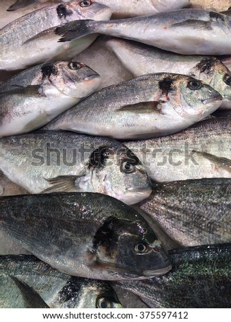 Fish background (photo was take it with mobile phone) - stock photo